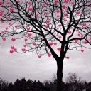 Ağaç Kalp