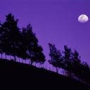 Ay ve Gün Batımı