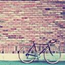 Bisiklet 2