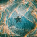 Deniz Yıldızı 3
