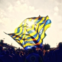 Fenerbahçe Bayrak
