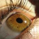 Göz 16