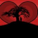 Gün Batımı Aşk 4
