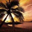 Günbatımı Sahil