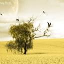 Hayal Dünyası Ağaç
