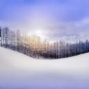 Kar Manzarası 1