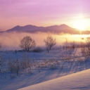 Kar ve Sisli Hava