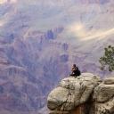 Kayalık Manzara