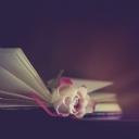 Kitap ve Gül