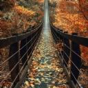 Köprü 3