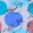 Kuşlar 8