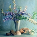 Mor Çiçek 8