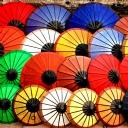 Renki Şemsiye