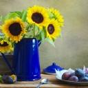 Sarı Çiçekler