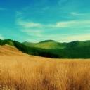 Tarla ve Dağlar