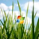 Windows Logo 3