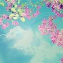Açık Mavi Gökyüzü