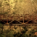 Ağaçlarla Kaplı Köprü