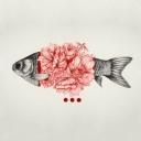 Balıklar 5