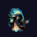 Balıklar 7