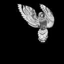Baykuş 3