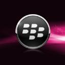 Blackberry Pembe