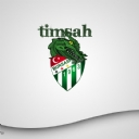 Bursaspor 1