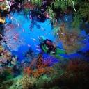 Deniz Mağarası