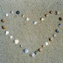 Deniz taşları 2