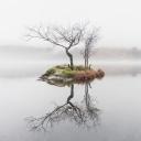 Doğa 4