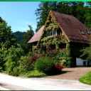 Ev ve Bahçe