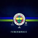 Fenerbahçe      15