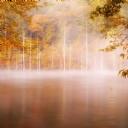 Göl Manzarası 8