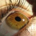 Göz 10