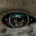 Göz 18