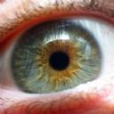 Göz 22