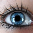 Göz 32
