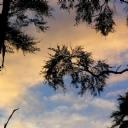 Gün batımı Bulutlar 2