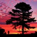 Günbatımı ve Bulutlara Yansıması