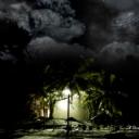 Hayal Dünyası Gece