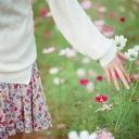 İlkbahar Sevinci