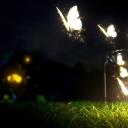 Işıklı Kelebekler