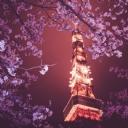 Işıklı Kule