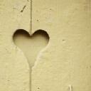 Kalp 15