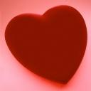 Kalp 4