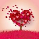 Kalpden Ağaç