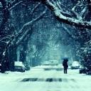 Kar Manzarası 8