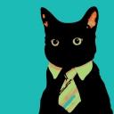 Kara Kedi 3