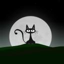 Kara Kedi 4