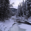 Karlı Yol 2